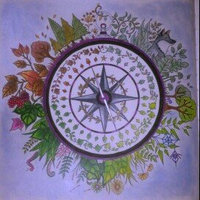 Enchanted Forest: An Inky Quest & Coloring Book uploaded by Katie M.