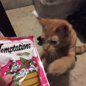 Photo of Whiskas Temptations Blissful Catnip Flavor Cat Treats uploaded by Nicole c.