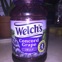 Welch's® Original Concord Grape Jelly uploaded by Kelsey R.