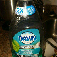 Dawn Hand Renewal Cool Springs Dishwashing Liquid uploaded by tiffany r.