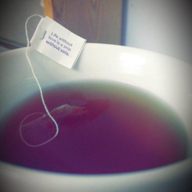 Yogi Tea Vanilla Spice Perfect Energy uploaded by Lauren R.