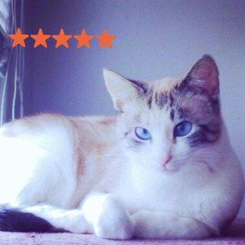 Whiskas WHISKASA TEMPTATIONSA Mega Cat Treat uploaded by Jozet G.
