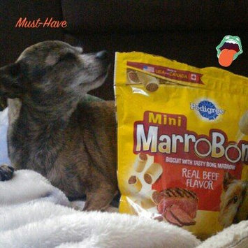 Pedigree Marrobone Real Beef Flavor Mini Toy/Small Dog Care & Treats 15 Oz Stand Up Bag uploaded by Allyssa V.
