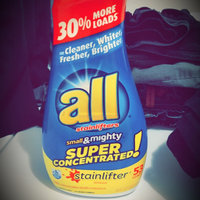 all® stainlifter® Laundry Detergent 53 Loads 40 fl. oz. Bottle uploaded by Harlow B.