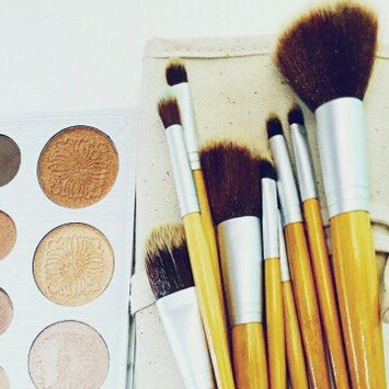 BH Cosmetics 10 Piece Eco Luxe Brush Set uploaded by Hina A.