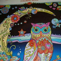 Creative Haven Owls Coloring Book uploaded by Bobbi T.
