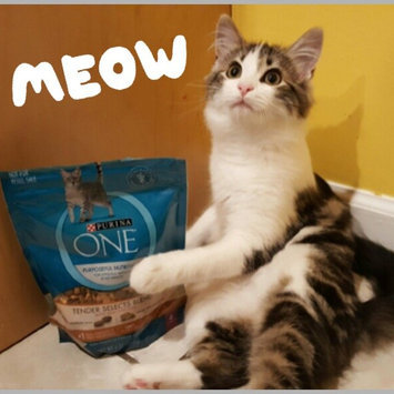 Purina ONE® Dry Food uploaded by Inna K.