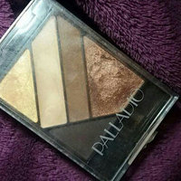 Palladio Silk FX Eyeshadow Palette uploaded by Mariandrea P.