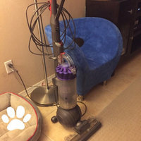 Dyson DC40 Animal Origin Upright Vacuum and Your Choice of Cleaning Kit Bundle uploaded by Amy G.
