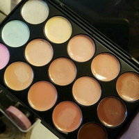 Coastal Scents Eclipse Concealer Palette uploaded by Denene