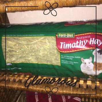 Photo of Kaytee Natural Timothy Hay uploaded by Sadie f.