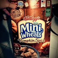 Kellogg's® Frosted Mini-Wheats® Limited Edition Pumpkin Spice Cereal 15.5 oz. Box uploaded by Emily W.