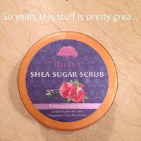 Tree Hut Pomegranate Acai Shea Sugar Scrub uploaded by Andrea L.