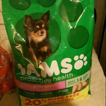 Photo of Iams™ Proactive Health™ Adult Small & Toy Breed Dog Food uploaded by Faith M.