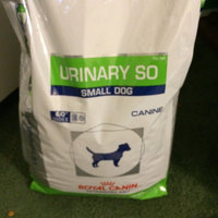 Royal CaninA Veterinary Diet Urinary SOTM Dog Food uploaded by Vanesa H.
