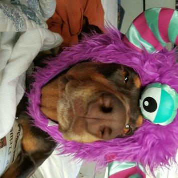 Photo of ASPCA uploaded by Angela S.