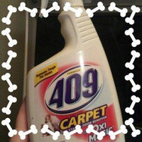 Formula 409 Carpet Spot and Stain Remover uploaded by AnnMarie W.