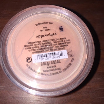 Photo of bareMinerals Loose Powder Blush uploaded by Melissa D.