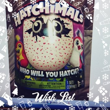 Spin Master Hatchimals Draggles Blue/Purple Egg - One of Two Magical Creatures Inside uploaded by Allison A.
