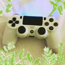 Sony DualShock 4 Wireless Controller - Glacier White (PlayStation 4) uploaded by Tiffany T.