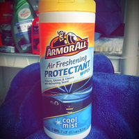 Armor All Air Freshening Cool Mist Protectant Wipes - 25 CT uploaded by Nichole L.