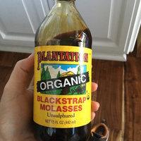 Plantation Organic Blackstrap Molasses - 15 oz uploaded by Britta F.