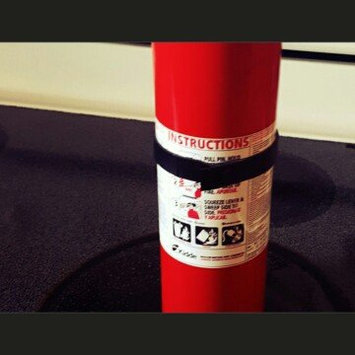 Photo of Kidde Pro 10 TCM ABC Fire Extinguisher 466204 uploaded by Alyssa K.