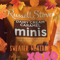 Russell Stover Fine Chocolates Dairy Cream Caramels uploaded by Paula B.