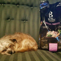Pure Balance™ Small Breed Chicken & Brown Rice Recipe Dog Food 7 lb. Bag uploaded by Heather G.