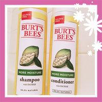 Burt's Bees More Moisture Shampoo uploaded by Barbara S.