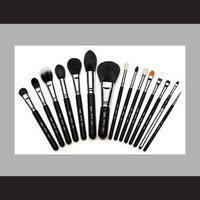 Sigma Beauty Premium Kit by Sigma Beauty 15 Makeup Brushes uploaded by Bárbara C.