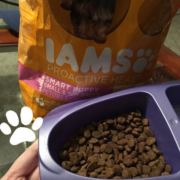 Photo of Iams™ Proactive Health™ Smart Puppy Small & Toy Breed Food uploaded by Virginia J.