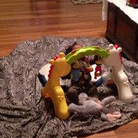 Fisher-Price Newborn-to-Toddler Play Gym. uploaded by Kiara E.