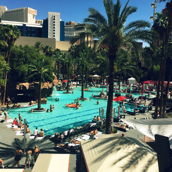 The Flamingo Las Vegas  uploaded by CrystalandRocky T.
