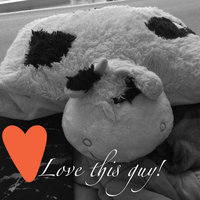 Pillow Pets uploaded by Corrina T.