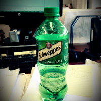 Schweppes Ginger Ale uploaded by Rebekah K.