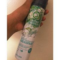 Herbal Essences Set Me Up Stylers Hairspray 11.5 oz. Aerosol Can uploaded by Yordanys G.