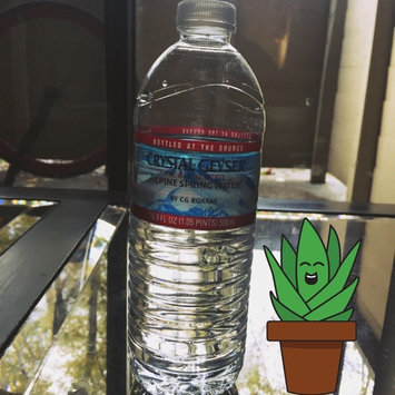 Photo of Crystal Geyser® Alpine 1 L Natural Spring Water 12 Ct Plastic Bottles uploaded by Natalie L.
