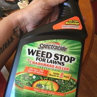 Spectracide 32 oz Weed Stop for Lawns Plus Crabgrass Killer (HG-95703) uploaded by Wendy C.