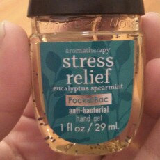 Photo of Bath & Body Works PocketBac Stress Relief Eucalyptus Spearmint Anti-Bacterial Hand Gel uploaded by Brittany T.