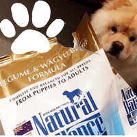 Natural Balance Limited Ingredients Diets Dry Dog Food - Legume & Wagyu Beef uploaded by Diane N.