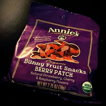 Annie's Homegrown® Berry Patch Organic Bunny Fruit™ Snacks uploaded by Kim B.