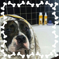 Burt's BeesTM Itch Soothing Dog Shampoo uploaded by Rita G.