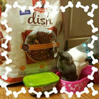 Nutrish Chicken Paw Pie™ uploaded by Emily C.