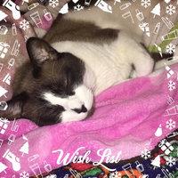 TEMPTATIONS® SNACKY MOUSE™ Cat Toy uploaded by Joana G.