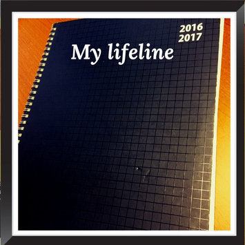 PlanAhead See It Bigger 18 Month Planner, July 2015 -December 2016, Assorted Colors, Color May Vary (86568) uploaded by Nicole K.