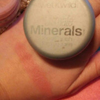 Wet N Wild Ultimate Minerals Loose Blush uploaded by Ashley R.