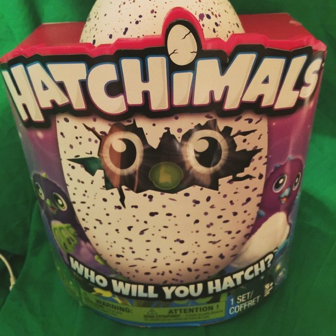 Spin Master Hatchimals Draggles Blue/Purple Egg - One of Two Magical Creatures Inside uploaded by Heather D.