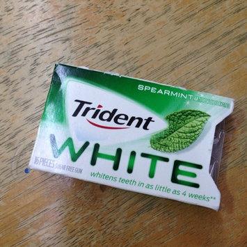 Trident Spearmint Sugar Free Gum uploaded by Alejandra P.