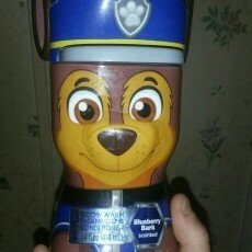 Paw Patrol Puptastic Punch Scented 3 in 1 Body Wash Shampoo & Conditioner, 14 fl oz uploaded by Anna A.